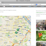 Photographiere Dein Krongärtlein und schick uns (info@krongarten.at) Dein Bild und wir fügen Dein Krongärtlein in den Stadtplan ein - ein Grünes Wien entsteht!
